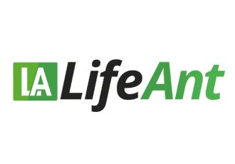 גודל לוגו לחברת ביטוח